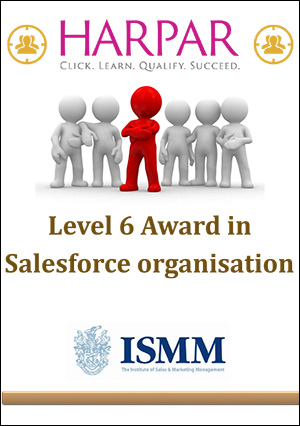 Level-6-Award-in-Salesforce-organisation