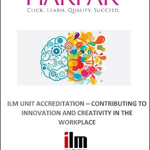 title-cover-CONTRIBUTING-TO-INNOVATION-AND-CREATIVITY-IN-THE-WORKPLACE-